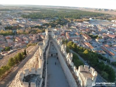 Ribera del Duero,visita enológica-Peñafiel; el tejo taxus bacata mochila espalda